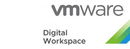 Workspace ONE UEM Deployment